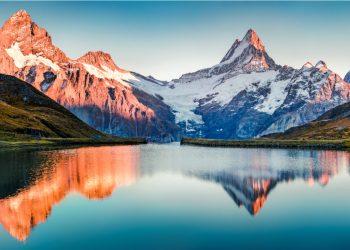alpi estate